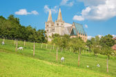 Spisska Kapitula - Saint Martins gothic cathedral from south-west. Unesco monument. — Stock Photo