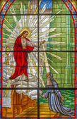 ROZNAVA, SLOVAKIA - APRIL 19, 2014: The Windowpane with the scene of Jesus appearing to Saint Margaret Mary Alacoque from 19. cent. in the cathedral of Assumption of Virgin Mary. — Stock Photo