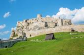 Spissky castle - Look from down castle courtyard — Stock Photo