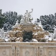 Vienna -  Neptune fountain from Schonbrunn palace in winter — Stock Photo #58868231
