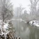 River Little Danube in winter - west Slovakia — Stock Photo #58868331