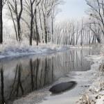 River Little Danube in winter — Stock Photo #60463953