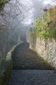 Bergamo - ascent to upper town in winter fog — Stock Photo