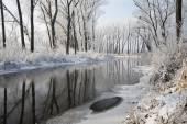 River Little Danube in winter — Stock Photo