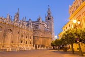 Seville - Cathedral de Santa Maria de la Sede with the Giralda bell tower in morning dusk. — Stock Photo