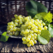 Fresh grapes. Toned image — Stock Photo