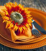 Autumn table setting. — Stock Photo