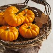 Fresh small pumpkins in the basket — Stock Photo #55105891