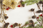 Christmas Decoration frame with pine cones — Stockfoto