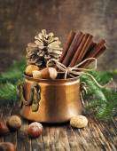 Christmas still life: cinnamon, nuts and fir branches — Stockfoto