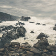 The wild coast of Tsitsikamma National Park with rocks and big w — Stock Photo #63429705