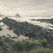 The wild coast of Tsitsikamma National Park with rocks and big w — Stock Photo #63429707