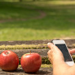 Red Apples and Man with Phone — Stock Photo #65074587