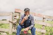 Elderly farm worker sitting and smoking — Stock Photo
