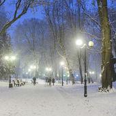 素敵な冬の都市公園の小道 — ストック写真