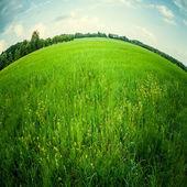 Beautiful landscape through fish eye lens — Stock Photo