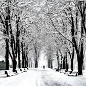 Painting showing footpath in a fabulous winter city park — Stock Photo
