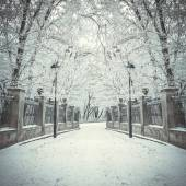 Fabulous winter city park in morning — Stock Photo