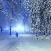 Voetpad in een fantastische winter stadspark — Stockfoto