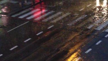 Heavy rain at the evening — Stock Video