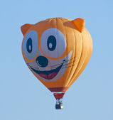 Cat hot air balloon — Stok fotoğraf