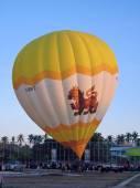 CHIANGMAI, THAILAND -JANUARY 21 2012: Hot air balloon register HS-BRT. Cameron Balloons O-105. Photo in Chiangmai balloon festival, Chiangmai. Thailand. — Stock Photo