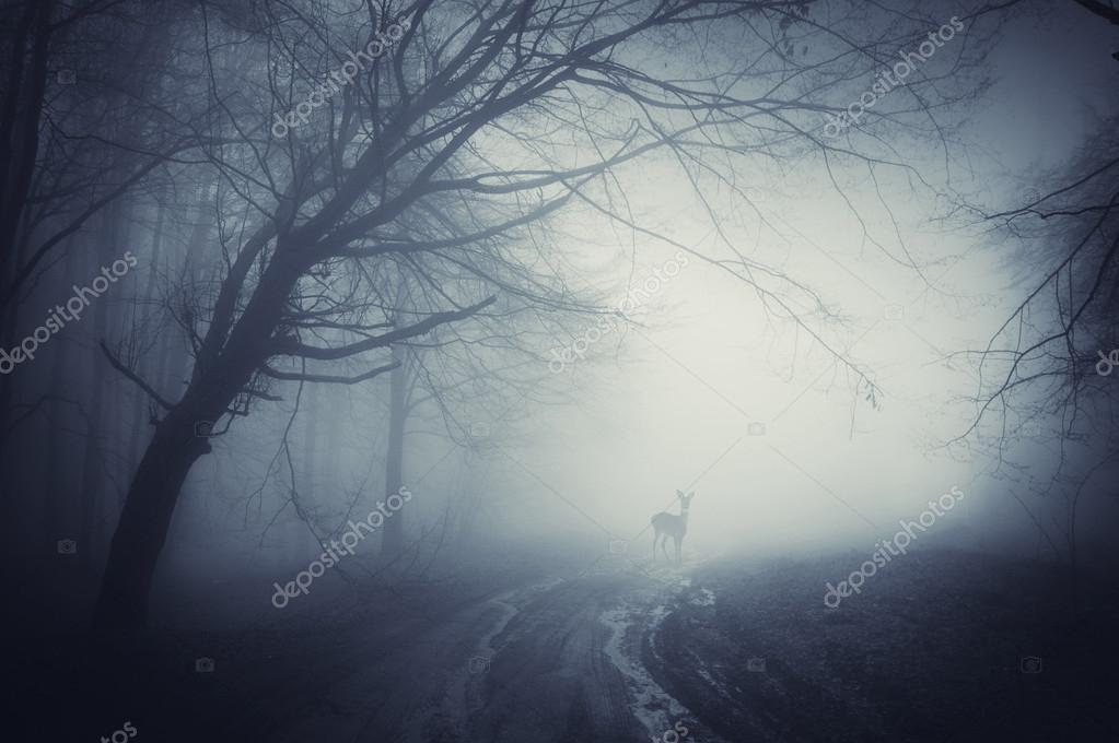 Дед в тумане  № 1842967 загрузить