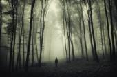 Man silhouette in spooky forest — ストック写真