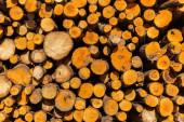 Woodpile kindling firewood wood detail closeup. — Stock Photo