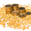 Euro coins with seeds — Stock Photo #67650769
