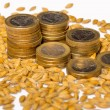 Euro coins with seeds — Stock Photo #67651053