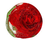 Red rose frozen in an ice — Foto Stock