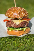 Tasty grilled burger on a grass — Stock Photo