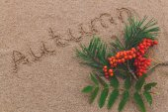 рован на песке — Стоковое фото