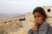 Bedouin girl, Jordan — Foto Stock