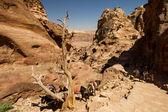 Petra, Jordan — Stock Photo