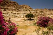 Jordan desert — Stock Photo
