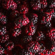 Blackberries from the forest — Stock Photo #69197055