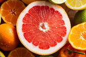 Pink grapefruit and other citrus fruit — Stock Photo