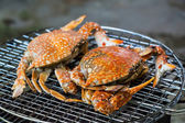 Crabs on charcoal grill — Stock Photo