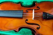 Beau violon isolé — Photo