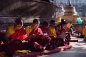 BODHGAYA, INDIA - JANUARY 21, 2015: Tibetan monks are celebratin — Stock Photo