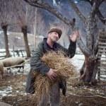 MAGURA, ROMANIA - 05 FEB: Old romanian peasant preparing to give food to farm animals on February 05 2015. Magura is a village in Carpatian Mountain — Stock Photo #64367817