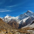 Machhapuchchhre mountain - Fish Tail in English is a mountain in — Stock Photo #71155223