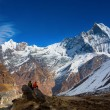 People enjoying view of Machhapuchchhre mountain - Fish Tail in  — Stock Photo #71155355