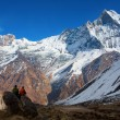 People enjoying view of Machhapuchchhre mountain - Fish Tail in — Stock Photo #71155405