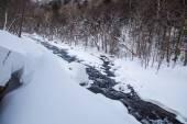 Winter season in Hokkaido. — Stok fotoğraf