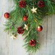 Christmas twig decorated with toys — Stock Photo #58312739