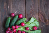 Lettuce cucumbers and radishes — Stock Photo
