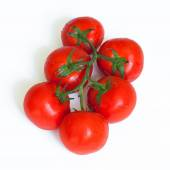 Branch of fresh tomatoes — Stock Photo
